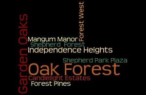 Oak Forest & Nearby Neighborhoods